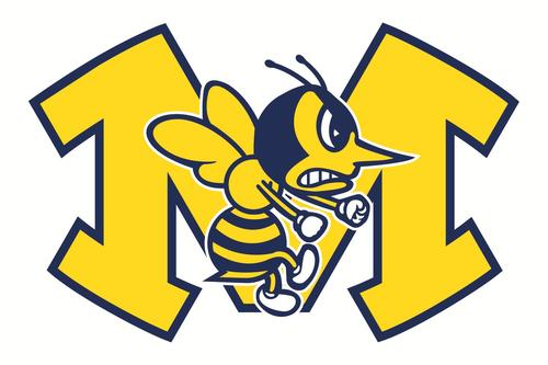 Picture of Fighting Hornet School Mascot
